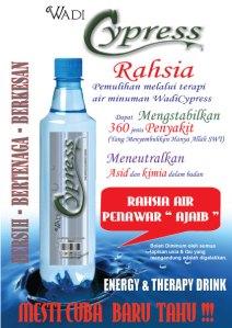 https://kedaivitaminku.files.wordpress.com/2012/09/flyer-ama.jpg?w=212