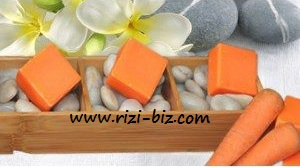 https://kedaivitaminku.files.wordpress.com/2012/09/papaya-riz2.jpg?w=300